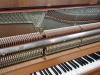 markowe pianino Ed.Seiler